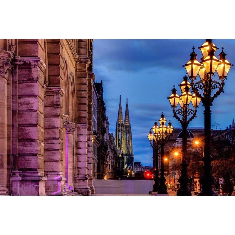 Экскурсия по вечерней Вене - фото 3 - 001.by