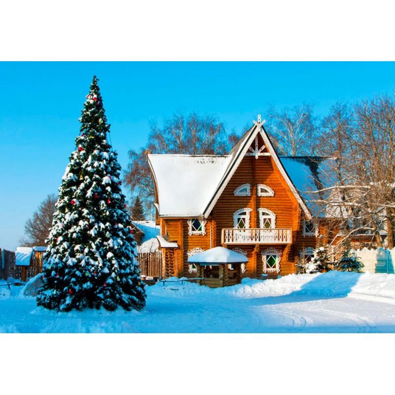 Новый год в Беларуси - фото 3 - 001.by