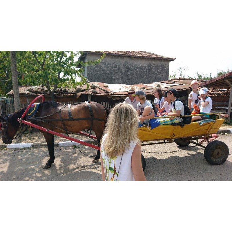 Болгарское село  - фото 4 - 001.by