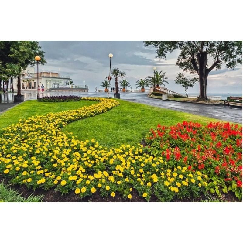 "Экскурсия ""Панорама Бургаса"""
