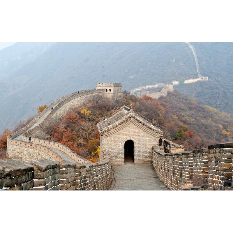 """Пекин """"Лайт"""" - фото 1 - 001.by"""