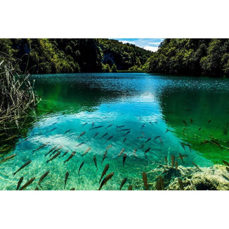 Национальный парк «Плитвицкие озера» - фото 4 - 001.by