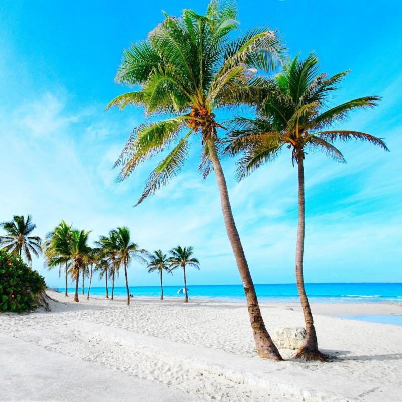 Власти Кубы просят туристов приезжать без наличных долларов - фото 3 - 001.by