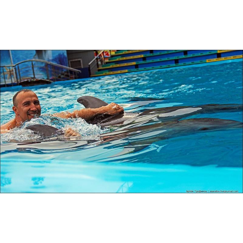 Купание с дельфинами - фото 3 - 001.by