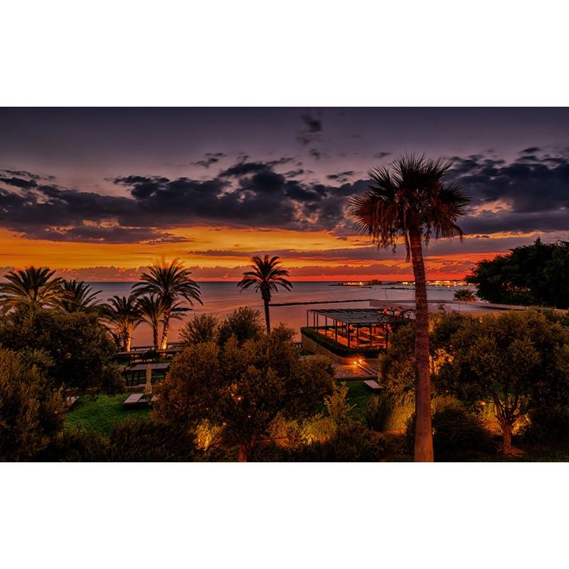 Сафари на осликах и кипрский вечер - фото 4 - 001.by