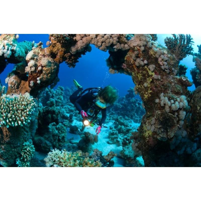 Дайвинг в Египте: подводные приключения для всех желающих - фото 3 - 001.by