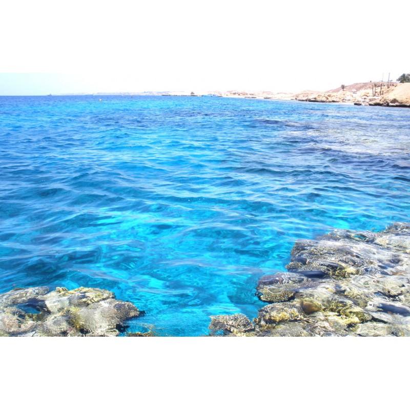 Красное море - фото 2 - 001.by