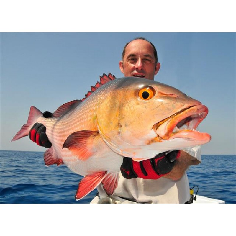 Профессиональная рыбалка - фото 3 - 001.by