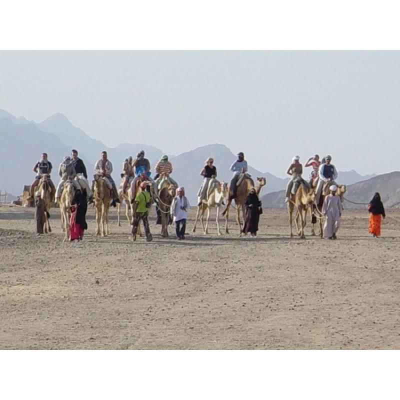 Сахара-парк: отдых на максимум!  - фото 3 - 001.by