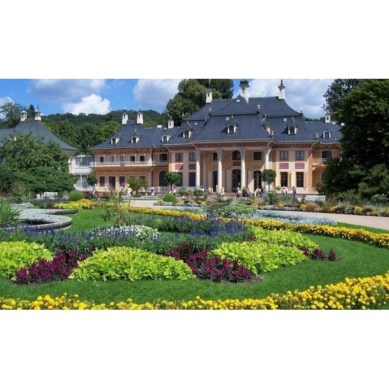 Парк бывшей королевской резиденции Пильниц - фото 3 - 001.by