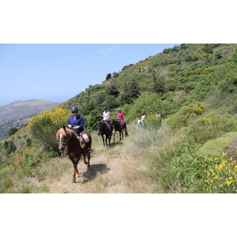 Прогулка на лошадях по острову Кос  - фото 3 - 001.by