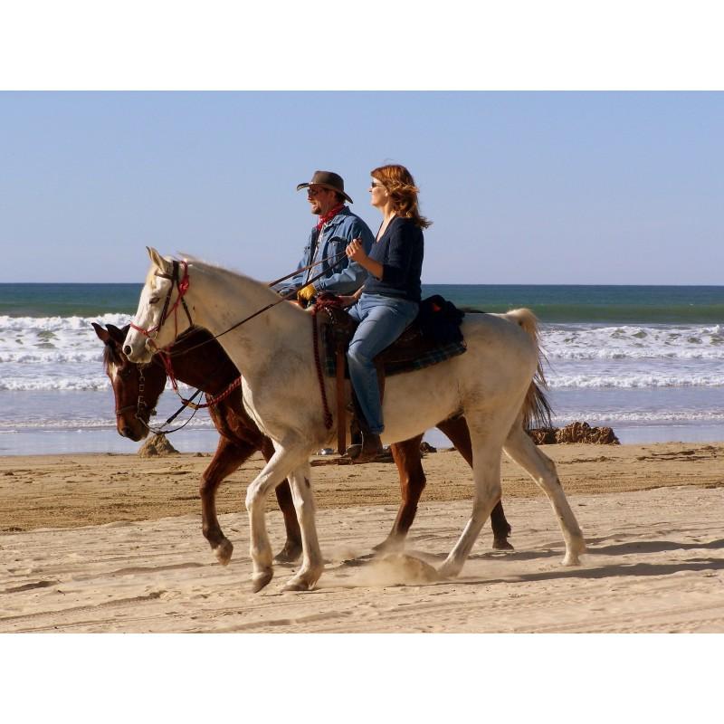 Прогулка на лошадях по острову Кос  - фото 4 - 001.by