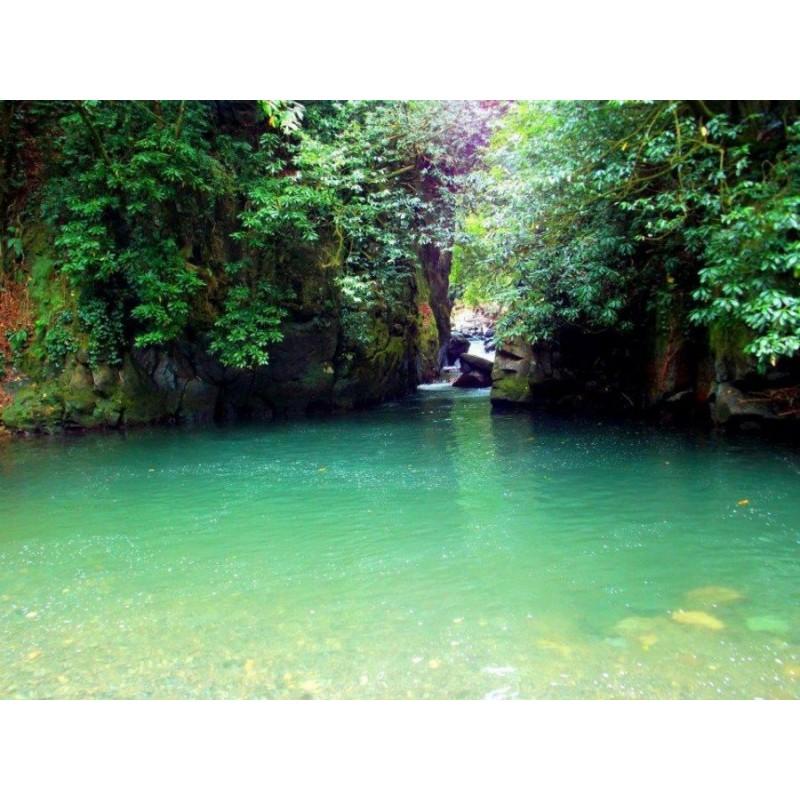Сафари-тур в национальный парк Мтирала из Батуми - фото 4 - 001.by