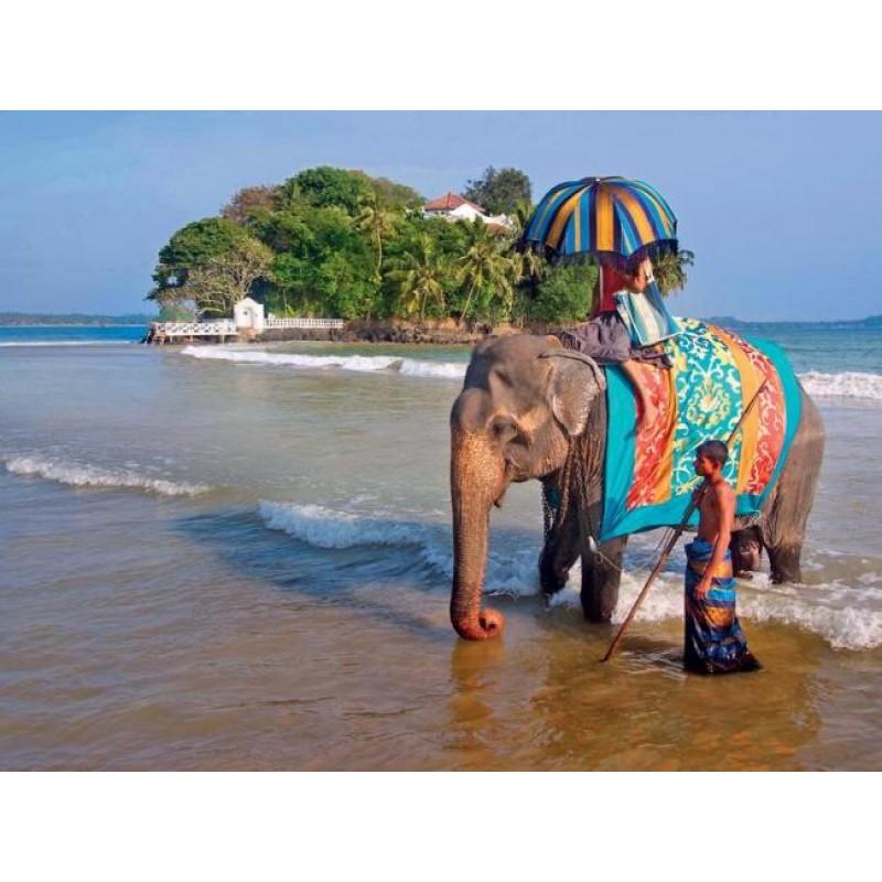 Горящие туры в Индию - фото 2 - 001.by