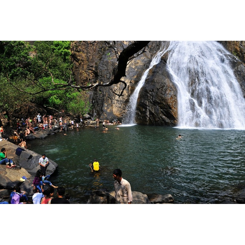 Водопад Дудсагар и плантации специй