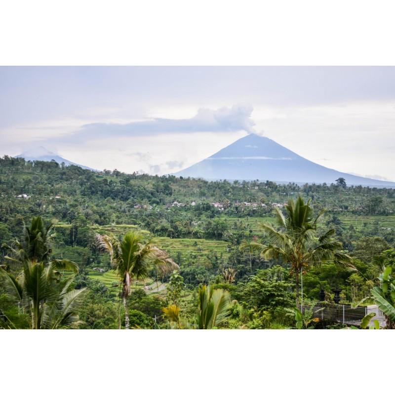 Дремлющий великан: тур к действующему вулкану Кинтамани - фото 4 - 001.by