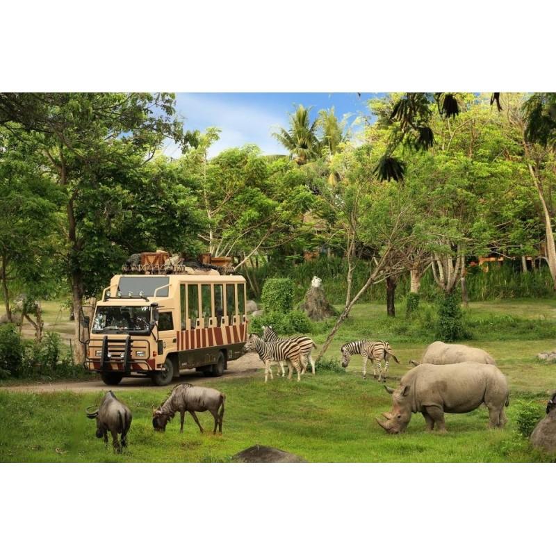 Экскурсия в сафари-парк