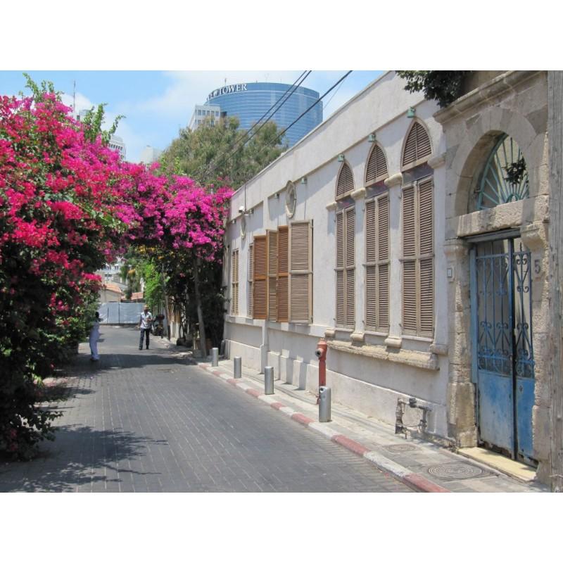 Тель-Авив – Яффо  - фото 2 - 001.by