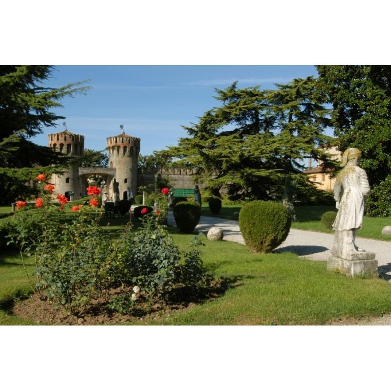 Экскурсия в Тревизо с дегустацией вин - фото 4 - 001.by