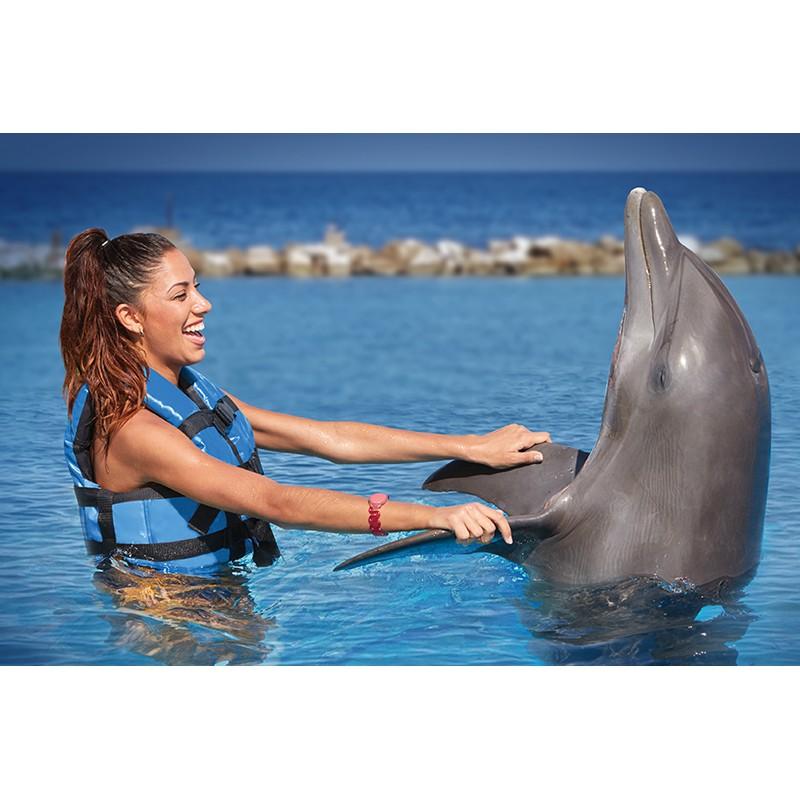 Купание с дельфинами в Карибском море  - фото 3 - 001.by