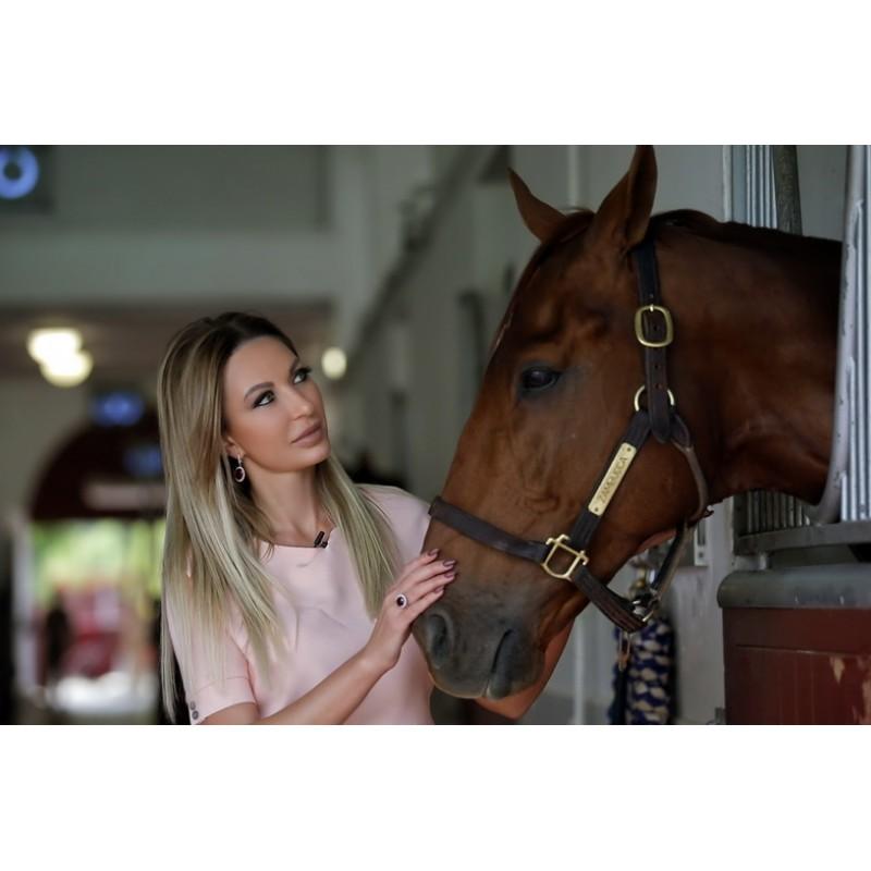 Аль Шакаб: экскурсия к чистокровным арабским лошадям - фото 3 - 001.by