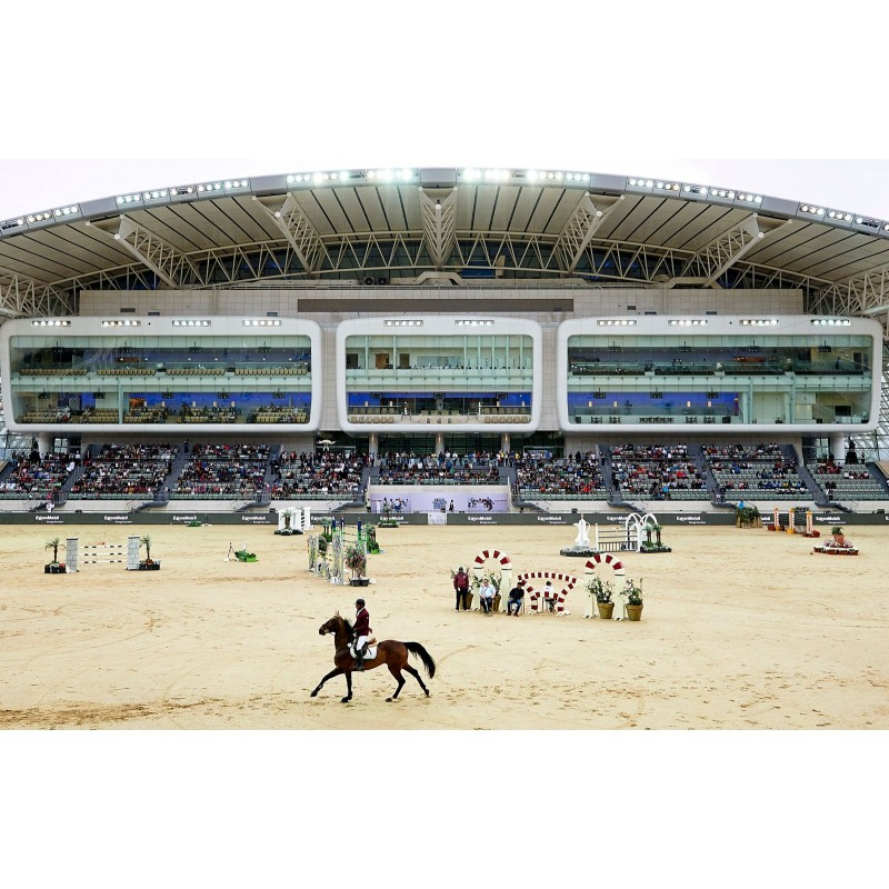 Аль Шакаб: экскурсия к чистокровным арабским лошадям - фото 4 - 001.by