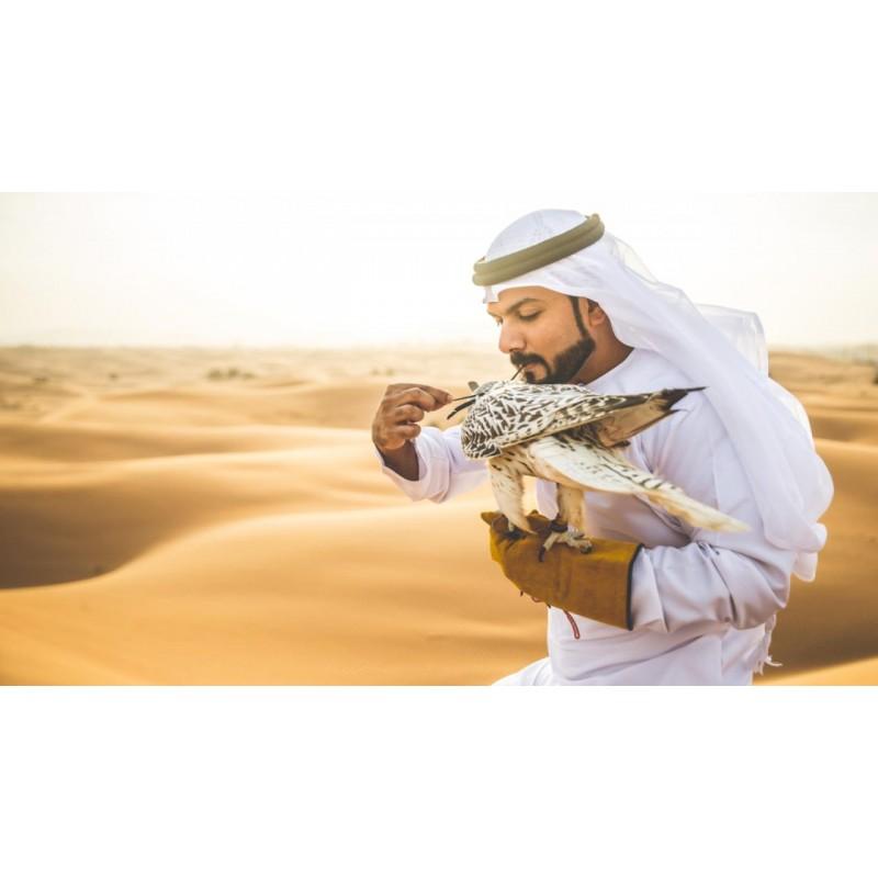 Соколиная охота в Катаре - фото 2 - 001.by