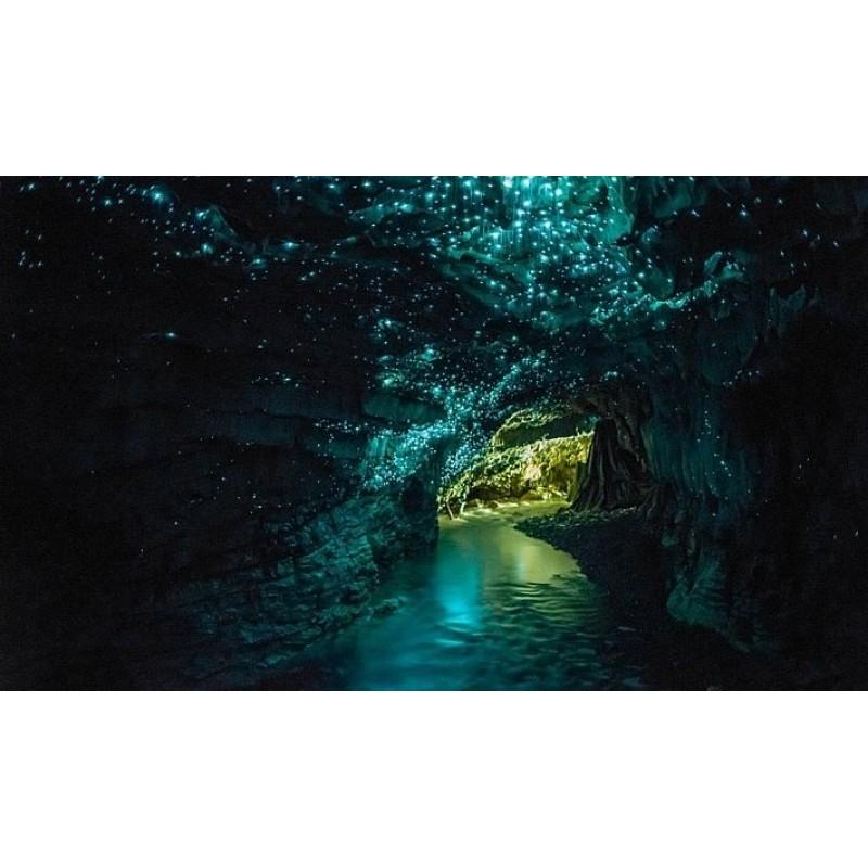 Пещеры Бату, индуистский храм и обезьяны - фото 4 - 001.by