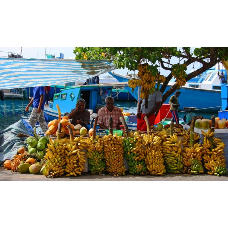 Экскурсия по Мале, столице государства Мальдивы - фото 3 - 001.by