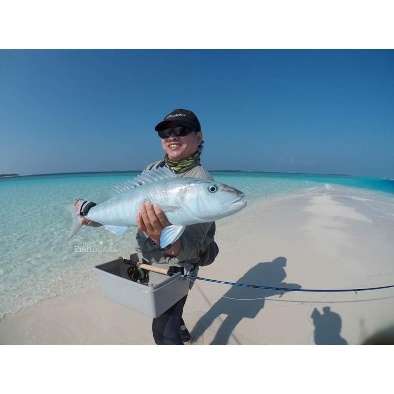 Рыбалка на Мальдивах: закиньте удочку в Индийский океан! - фото 4 - 001.by