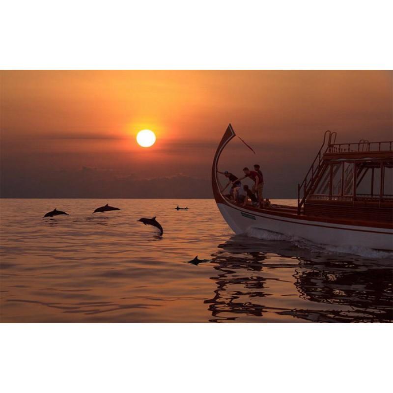 Закат с дельфинами на Мальдивах