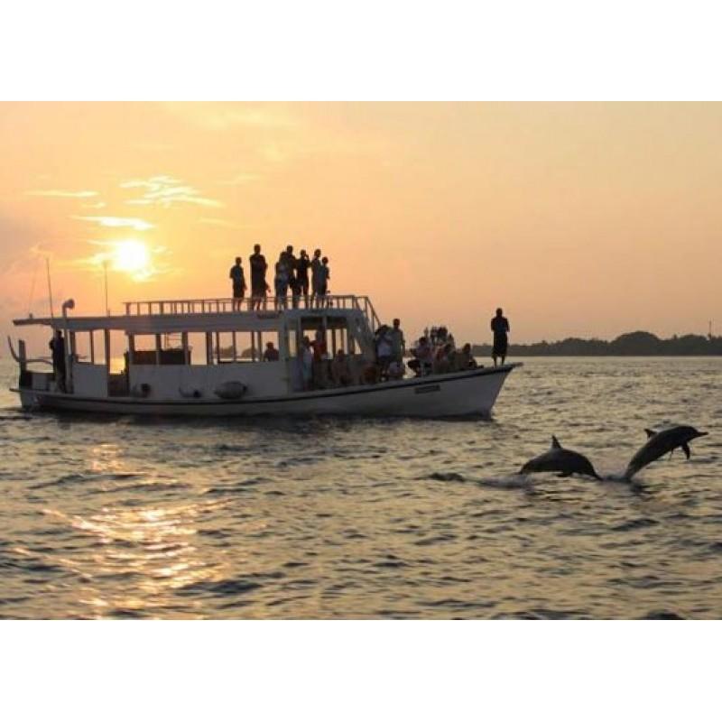 Экскурсия «Закат с дельфинами» - фото 3 - 001.by
