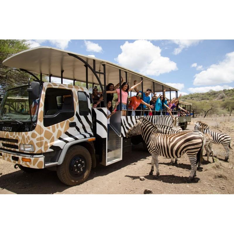 Обзорная экскурсия по Маврикию - фото 4 - 001.by