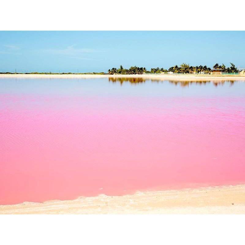 Рио Лагартос, Розовые Озёра и Вальядолид  - фото 2 - 001.by