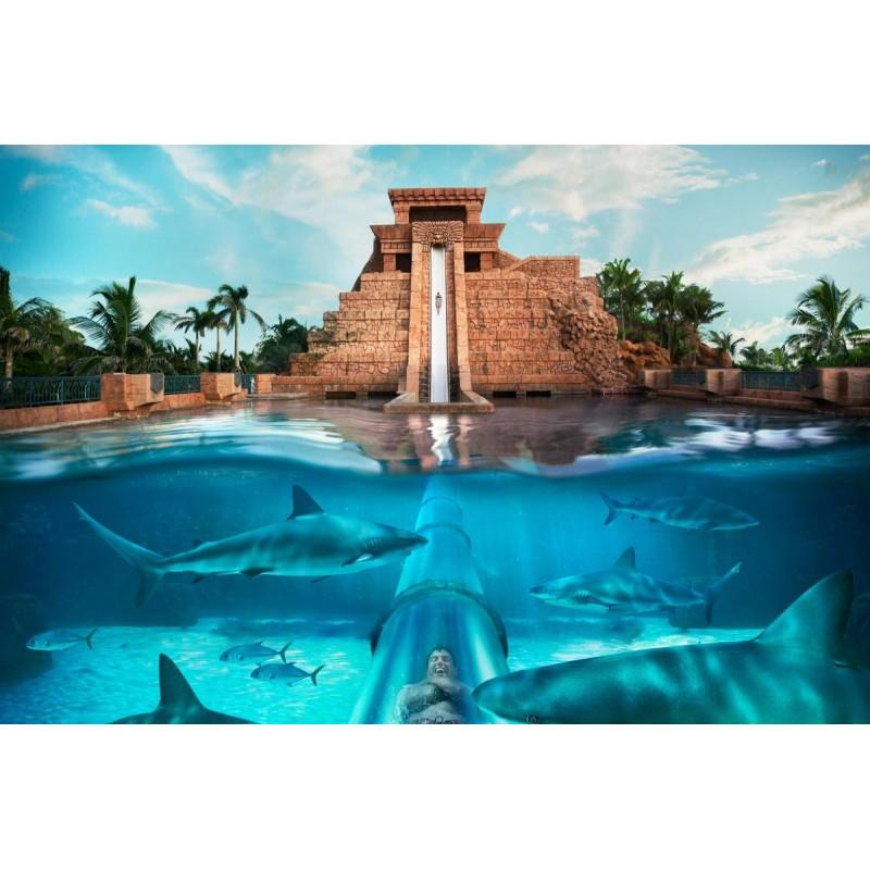 Аквапарк «Aquaventure»: здесь всегда весело! - фото 4 - 001.by