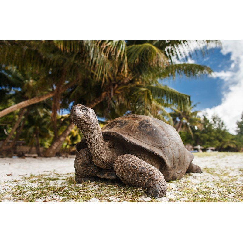 Экскурсия по острову Праслин - фото 3 - 001.by