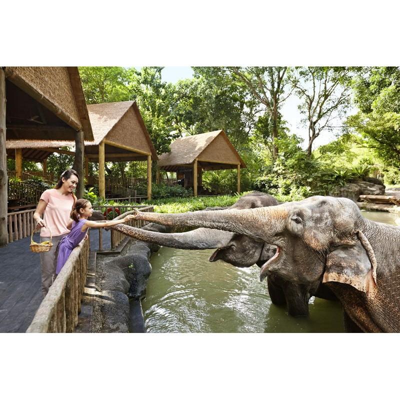Зоопарк в Сингапуре - фото 3 - 001.by