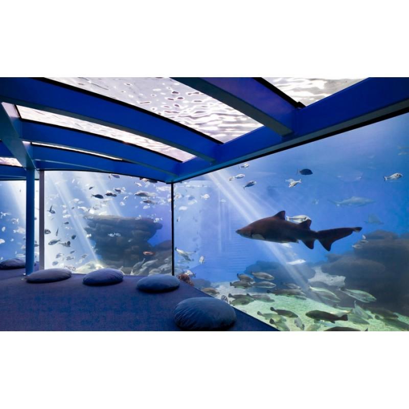 Экскурсия в Океанариум Palma Aquarium на Майорке  - фото 4 - 001.by