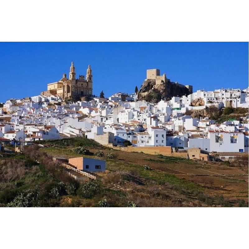 Экскурсия в Белые деревни Андалузии