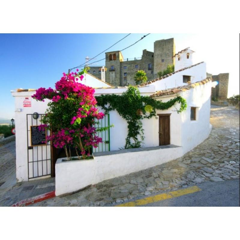 Экскурсия «Белые деревни Андалузии» - фото 4 - 001.by