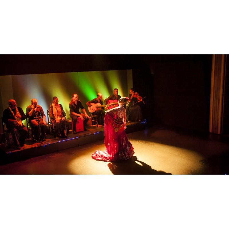 Шоу Фламенко в Барселоне  - фото 3 - 001.by