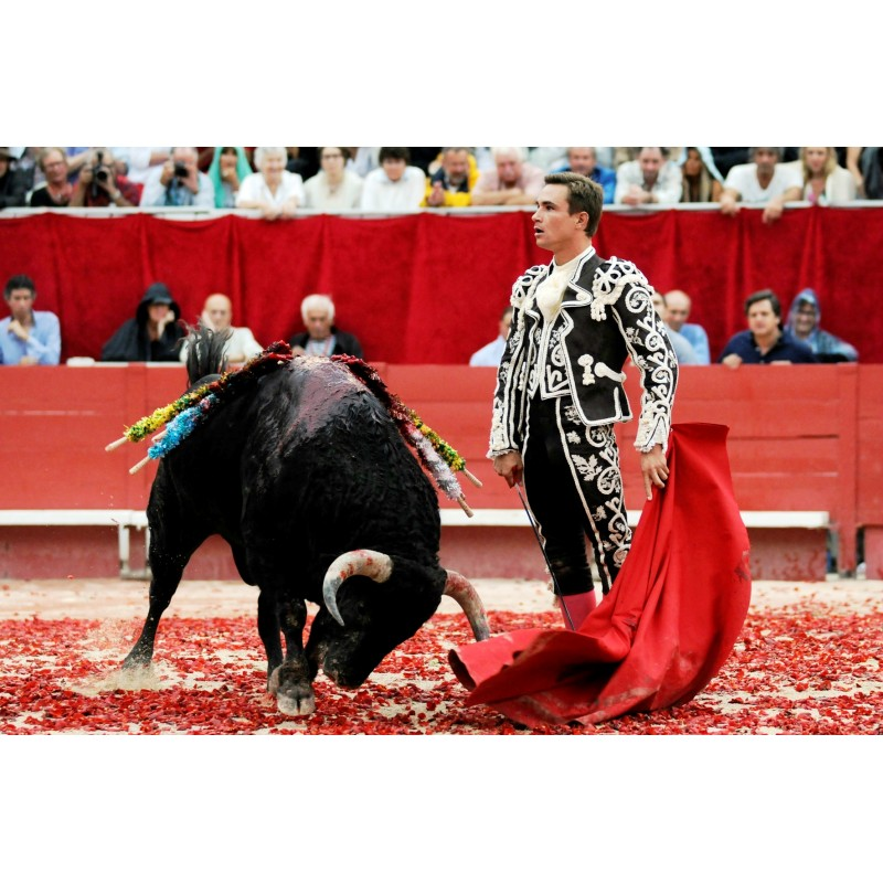 Экскурсия Коррида в Испании