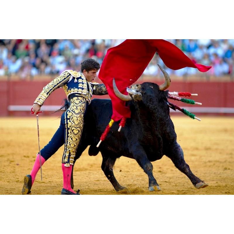 Коррида в Испании - фото 2 - 001.by