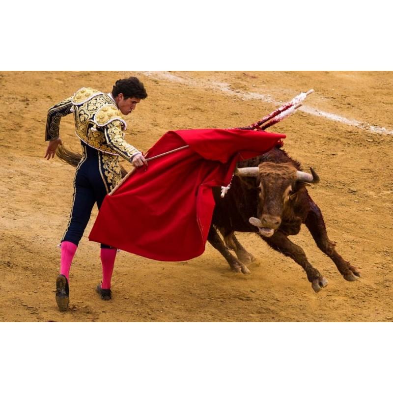 Коррида в Испании - фото 3 - 001.by