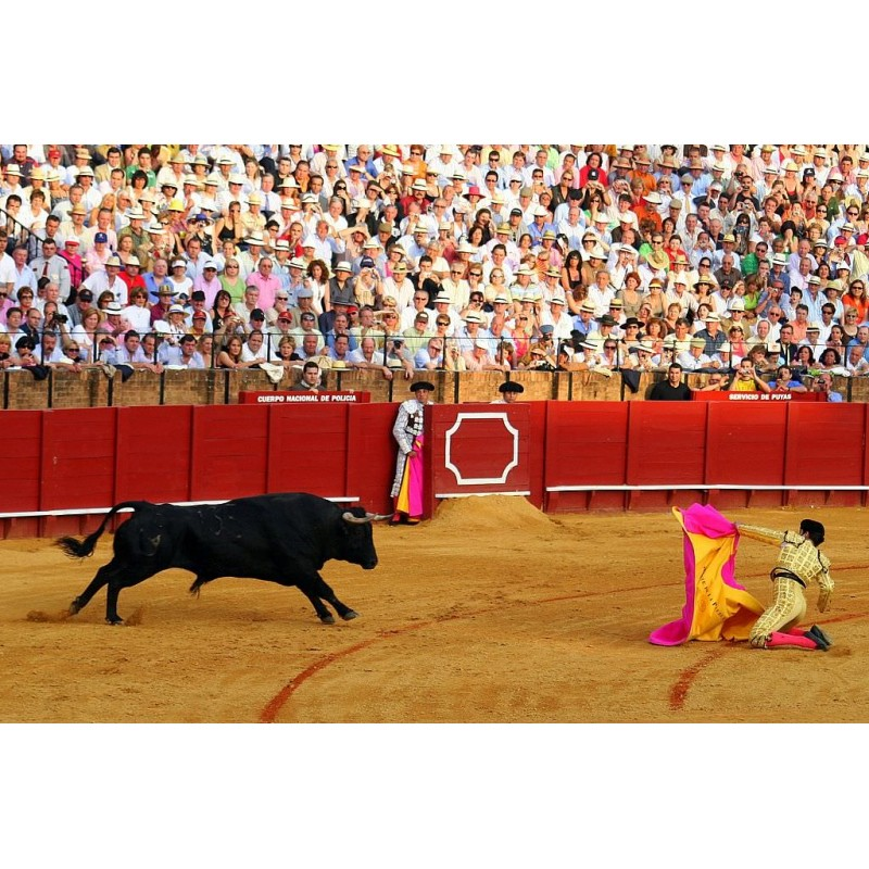 Коррида в Испании - фото 4 - 001.by