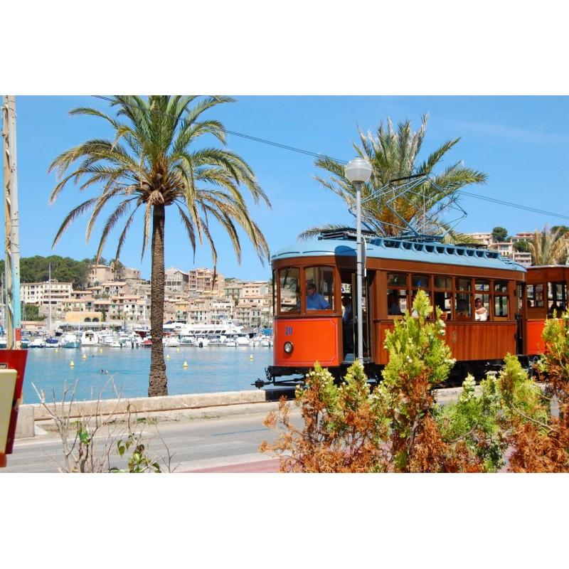 Обзорная экскурсия по острову Майорка - фото 2 - 001.by