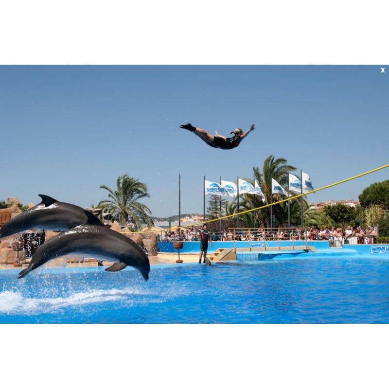 Морской зоопарк и дельфинарий Marineland (Майорка) - фото 2 - 001.by