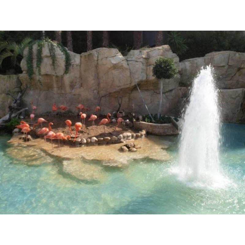 Парк экзотических животных Mundomar - фото 2 - 001.by