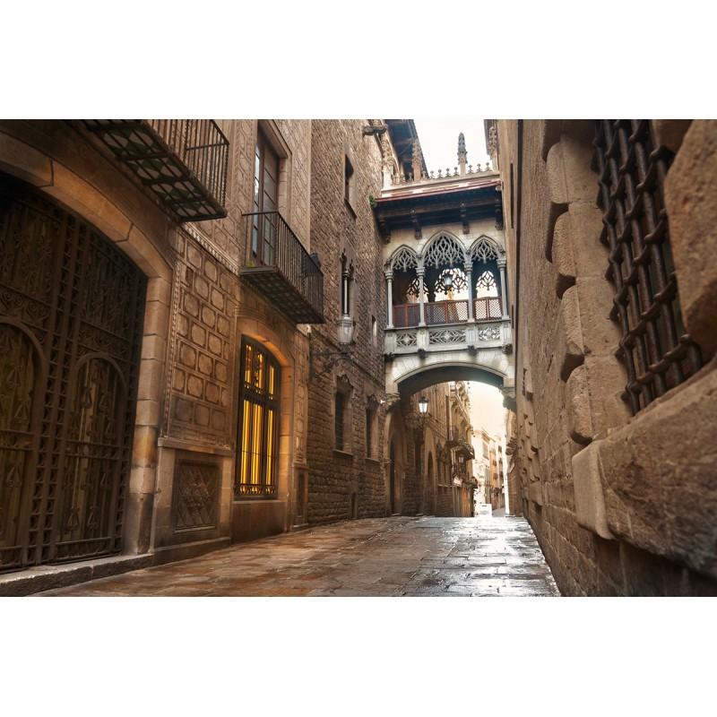 Пешеходная экскурсия по Барселоне: Готический квартал, бульвар Рамбла и Аквариум - фото 3 - 001.by