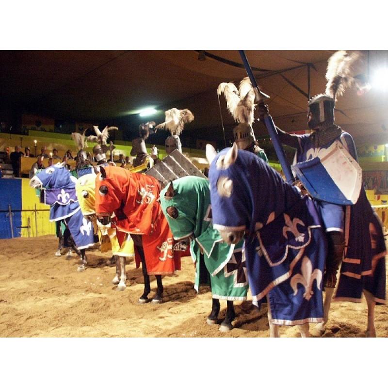 Рыцарский турнир в Испании: почувствуйте себя в средневековье - фото 2 - 001.by